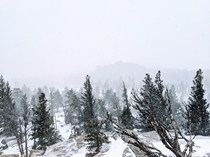 Vedauwoo in Wyoming during a short snow storm