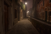 Venetians cat Le calli at night  xpost from rItalyPhotos