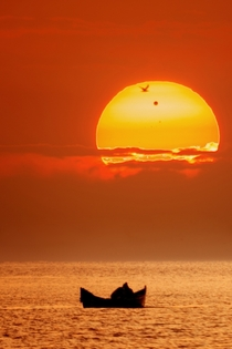 Venus Transit seen from Romania Photo by Alex Conu