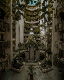 Vertical forest inside a building in Singapore