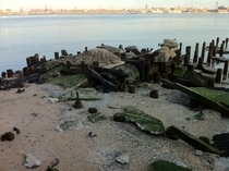 Very Old Wooden Pipe East River New York NY