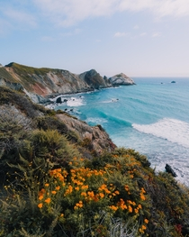 Vibrant colors on the Big Sur coast
