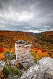 Vibrant early fall colors in Blackwater Falls State Park West Virginia  jeremy_riffe_