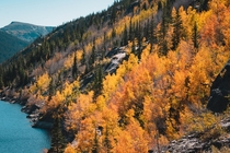 Vibrant fall colors in the mountains of Colorado