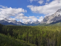 View from a horse riding trail in Kananaskis Canada