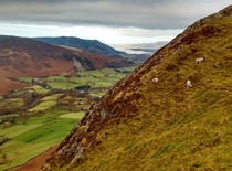View from Cat Bells the Lake District UK