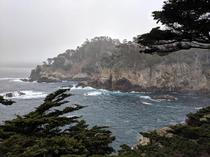 View from Cedar Grove at Point Lobos State Reserve CA