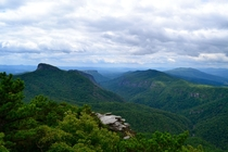 View from Hawksbill Mountain NC