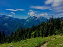 View from ONeil Pass - Olympic National Forest