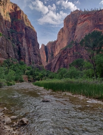 View from River Side Walk at Zion National Park Utah USA