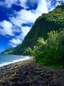 View from the floor of the Waipio Valley Big Island HI OC