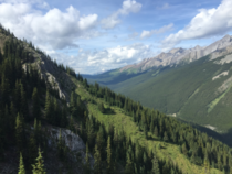 View from the Mount Norquay chairlift in the summer Banff National Park