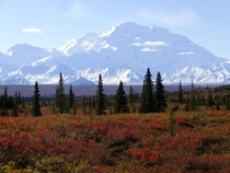 View from Wonder Lake Campground on a clear autumn day Denali National Park Alaska