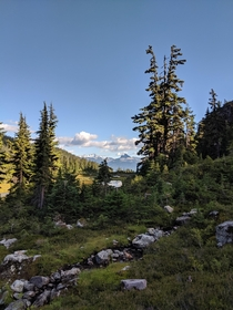 View of Black Tusk from Brandywine Meadows