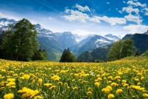 View of Glarus Alps from Braunwald Switzerland