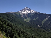 View of Mount Hood from Bald Mountain  x