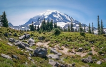 View of Mount Rainier from Spray Park