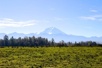 View of Mount Rainier from the countryside
