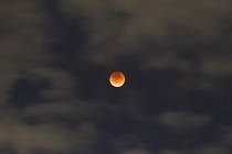 View of the Eclipse Super Moon and Blood Moon from Chicago