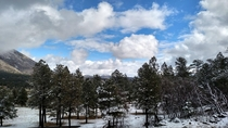 View Outside Flagstaff AZ