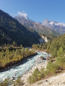 Views while hiking in the Himalayas  x