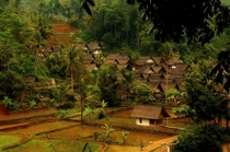 Village in Java Indonesia