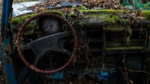Vintage Car Cockpit - Overgrown and Decaying