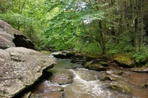Virginia Creeper Trail Damascus Virginia USA  x