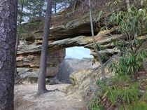 Visited Red River Gorge in Kentucky this past weekend The area has over  natural arches