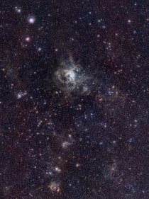 VISTA Magellanic Cloud Survey view of the Tarantula Nebula