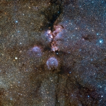 VISTAs infrared view of the Cats Paw Nebula