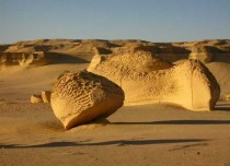 Wadi Al-Hitan or whale valley because of fossils found by scientists in Egypt