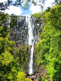 Wairere Falls Matamata Highest water fall in New Zealands north island