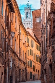 Walking around the centro of Siena Italy with the Torre del Mangia peeking through