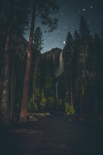 Walking in the dark Yosemite Ca  instagrammischievous_penguins