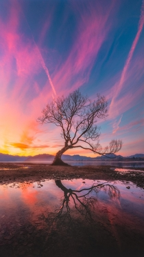 Wanaka when the lake was low Otago New Zealand