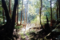 Wandering on hundred year old trails on Clark Island BC   x
