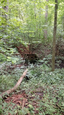 Was out hiking in Michigan and spotted what looks to be an abandoned well