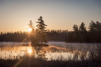 Was up early shooting the stars and was treated to this misty sunrise near Bancroft Ontario Canada