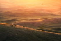Washington USA This was such a great AM sunrise in the Palouse writes photographer Jesse Summers