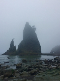 WashingtonPNW Coast a magical place to be