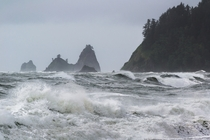 Washingtons Wild Coast