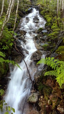 Waterfall at Iron Goat Trail Stevens Pass WA
