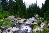 Waterfall at Paradise on Mount Rainier