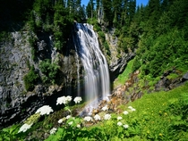 Waterfall in Rainer National Park