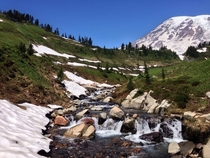 Waterfall on the Skyline Trail Mt Rainier
