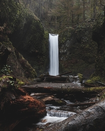 Waterfall tucked away in Oregons Columbia River Gorge