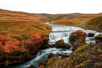 Waterfalls above Skogafoss in Autumn - Sogafoss Iceland  x