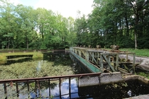 Waterloopbos Netherlands This is a old laboratory where flood defense systems were tested