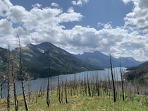Waterton Alberta after a wildfire ravaged most of the trees